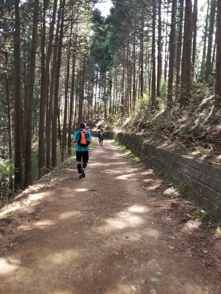 Man running down trail in the woods of west Tokyo