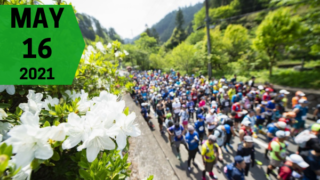 Nariki Forest Trail Race