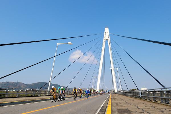 Professional cyclists riding on bridge