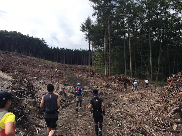 Trail race in Japan