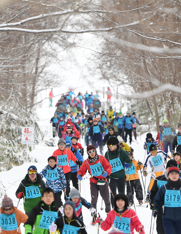 Large group of cross country skiers