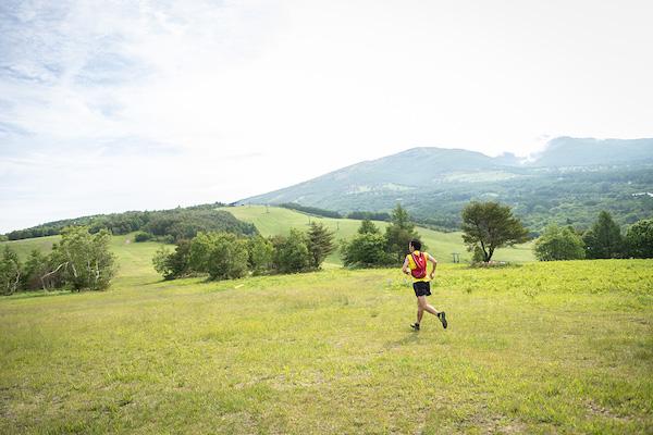 runner during Skyline Trail Sugadaira