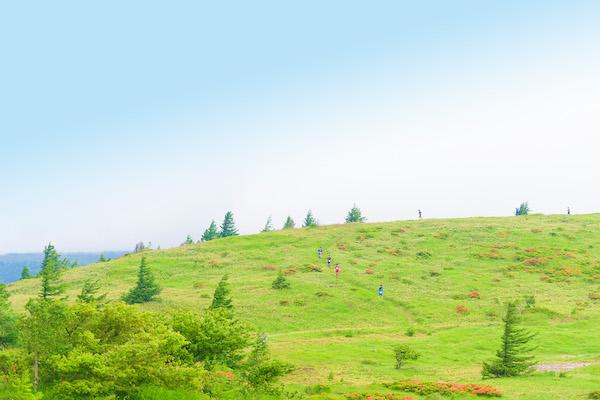 Utsukushigahara trail