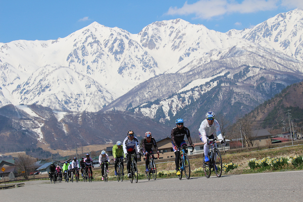 Cyclists in Nagano spring
