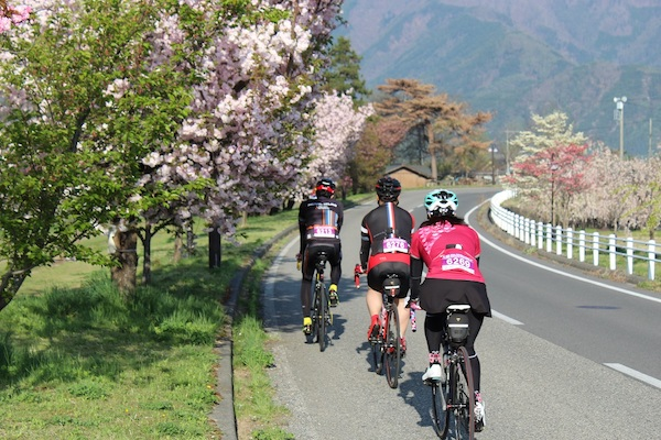 Cyclists riding along road in Azumino