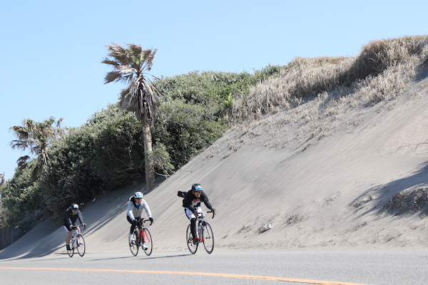 Cyclists riding by sand dunes