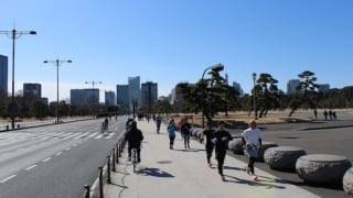 Runner's Guide to the Imperial Palace
