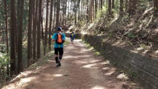 O Me, O My!: 2018 Ome Trail Race Review