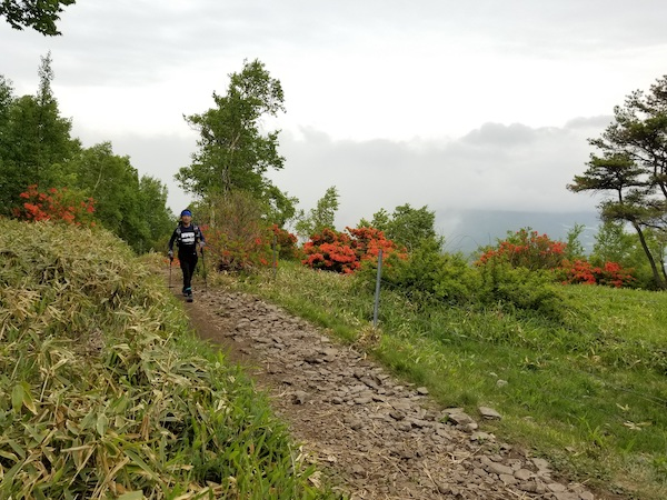 Colorful trails in Nagano