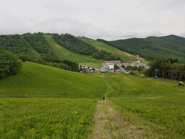 Green fields of Nagano