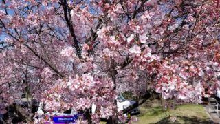 Cycling in Nagano: Alps Azumino Century Ride – Sakura Group