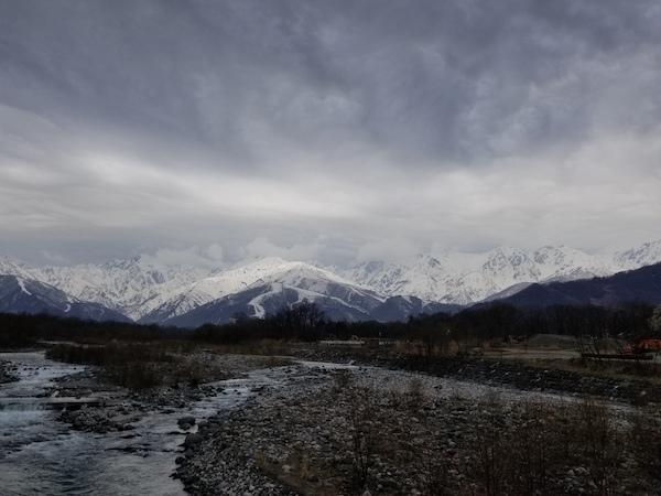 AACR Sakura scenery