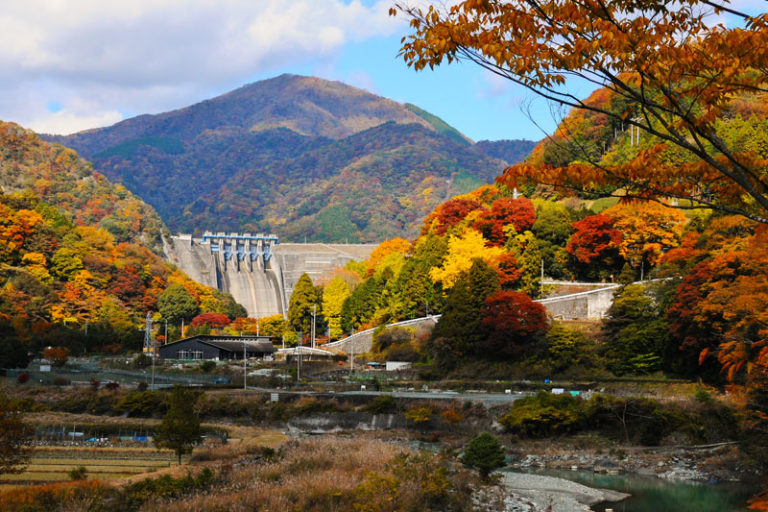 Ashigara Long Ride - autumn foliage