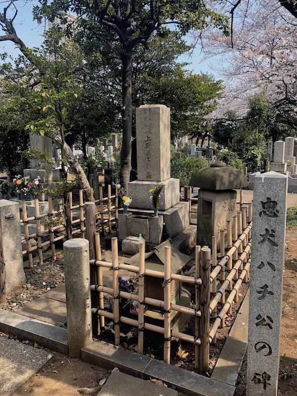 hachi's grave