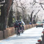 Exploring Tokyo: Cycling Tours in Japan