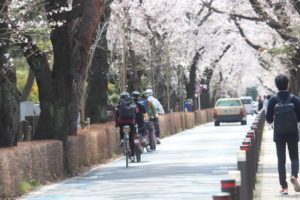 Exploring Tokyo: Cycling Tours in Japan