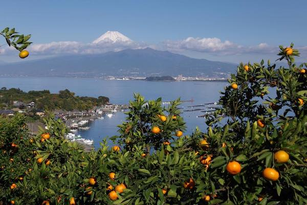 view of Izu peninsula coast