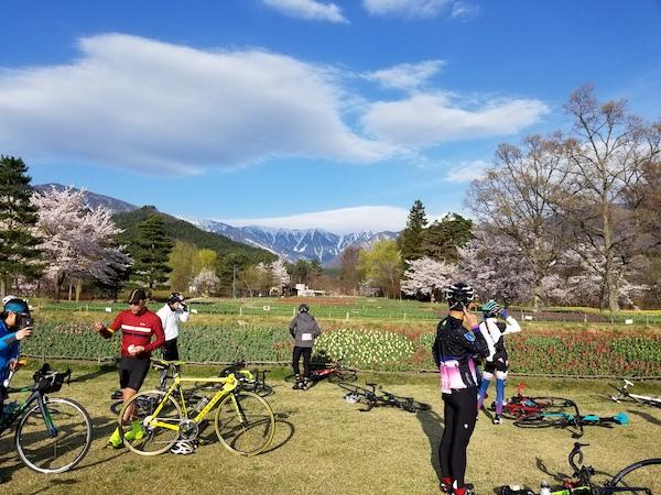 cyclist resting during Alps Azumino Century Ride - Sakura Group