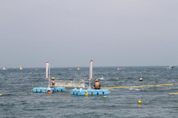 gate on Tateyama open water swim course