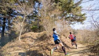 2019 Tokyo Trail Run Race Series: The Races