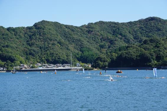 susaki open water swim