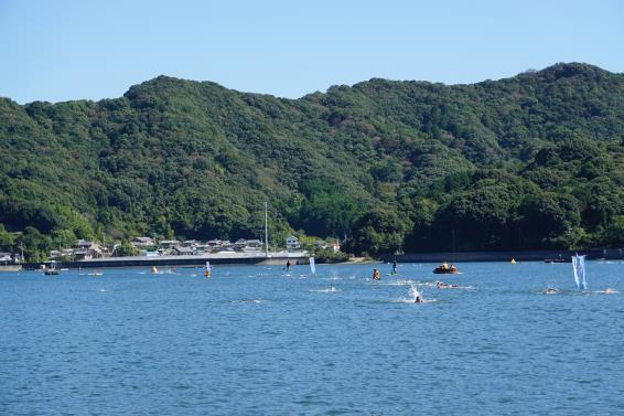 susaki open water swim