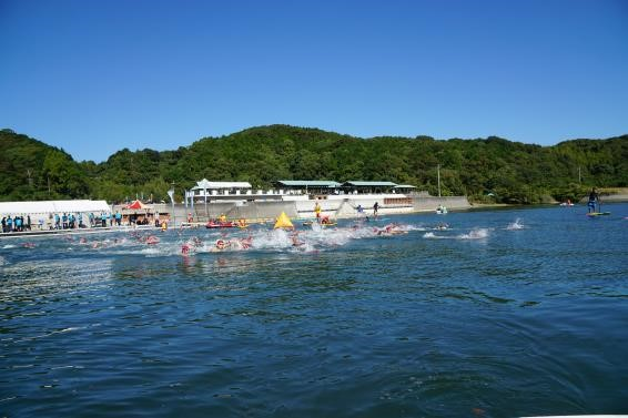 swimmers during Susaki open water swim