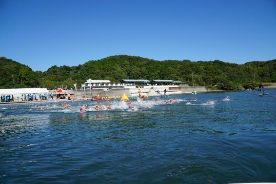 swimmers during Susaki open water swim