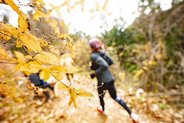 runner during mt mitake trail race