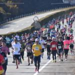 Ise Half Marathon & 5KM: 3rd Time's a Charm
