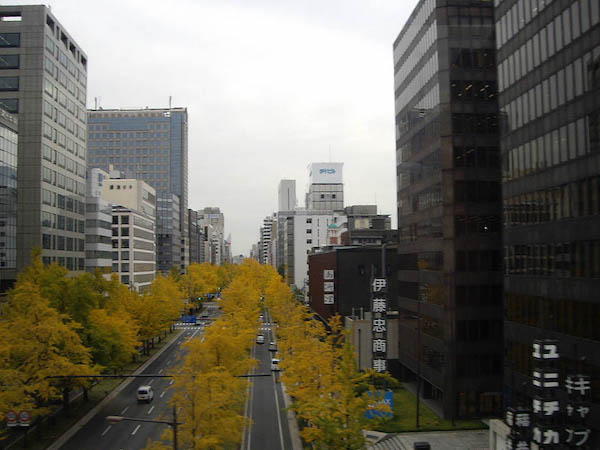 view of osaka marathon course