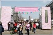 Pink Ribbon Walk 6