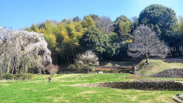 Tsurumaki Nishi Park