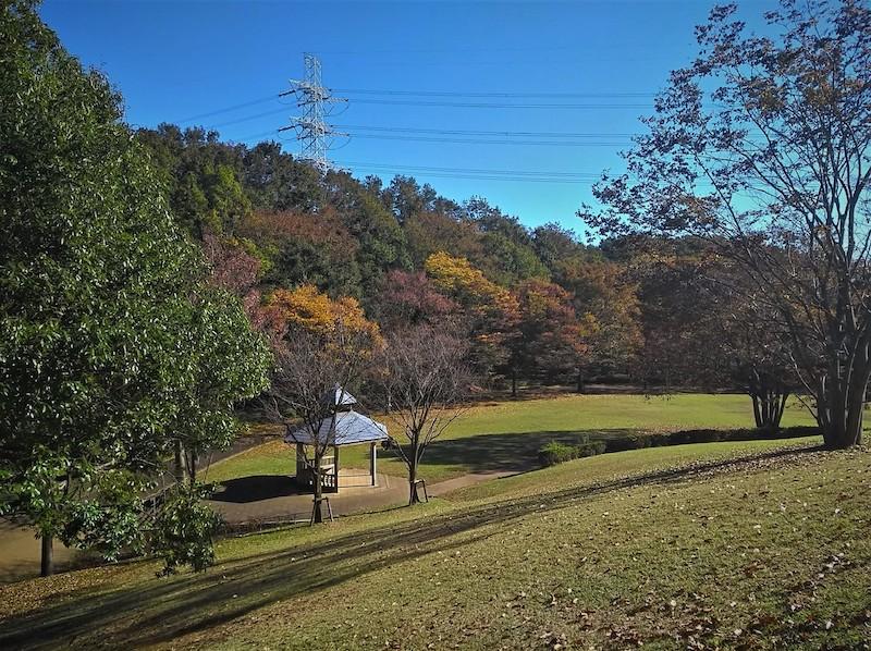 Shinkoji park