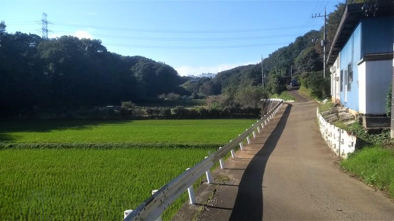 Haruhino farmland