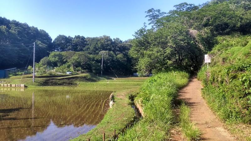Oyamada park area