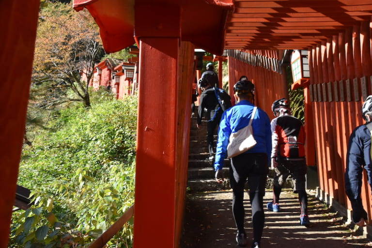 path of torii gate
