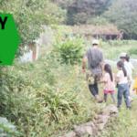 Farm to Table: Seasonal Harvests in the Miura Peninsula