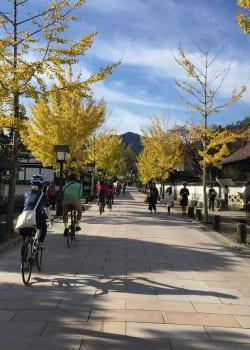 Tsuwano Cycling Tour 10